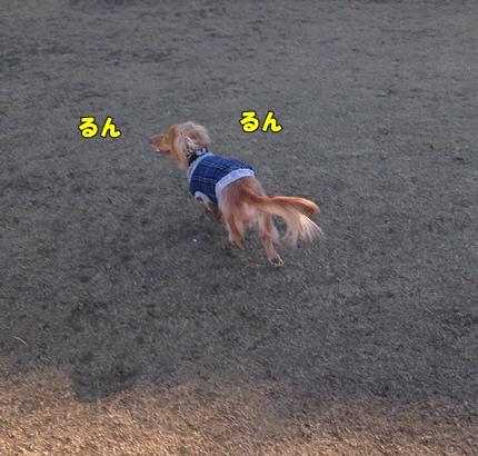 2892.jpg
