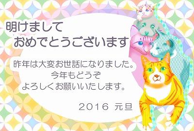 2016_猫