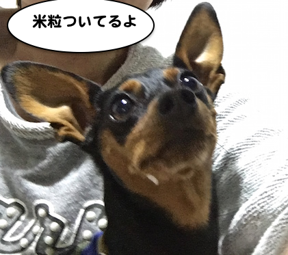 20160107-10.png