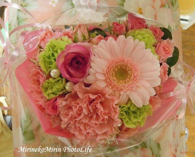 20160303お花
