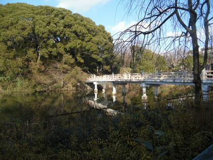 2 茶臼山(ちゃうすやま)の全景