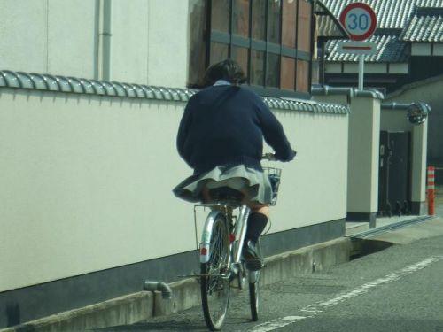 JKの自転車パンチラ盗撮画像集めたから貼っていくわ! 40枚 No.3