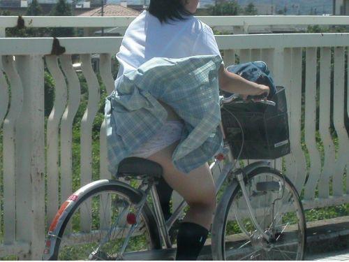 JKの自転車パンチラ盗撮画像集めたから貼っていくわ! 40枚 No.29