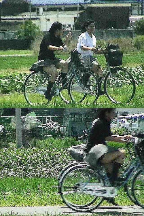 【盗撮画像】風が吹いたらパンチラしちゃう自転車通学JK画像 41枚 No.7