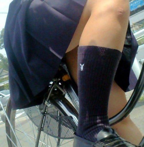 【盗撮画像】風が吹いたらパンチラしちゃう自転車通学JK画像 41枚 No.21