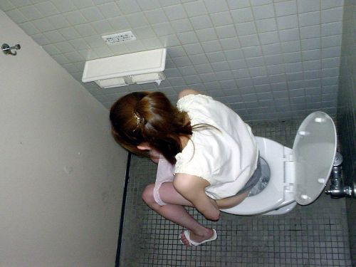 【盗撮画像】女性の局部は見えないけど、洋式トイレもエロかった^^ 43枚 No.36
