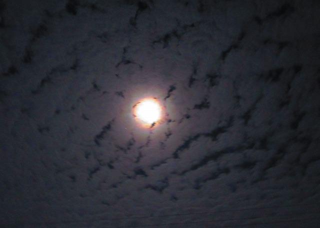 雲と月暈 28.2.23 16日月