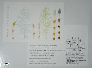 2016年3月 be京都 個展DM表裏