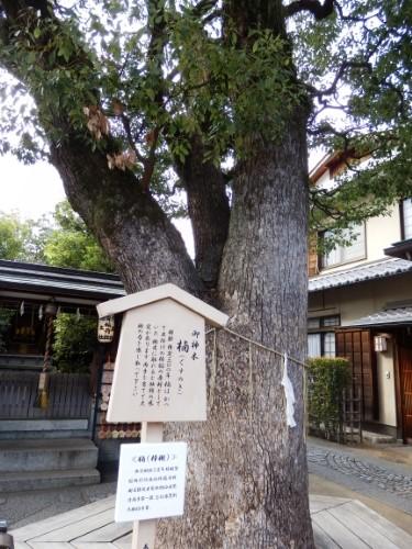 清明神社 (19)_resized