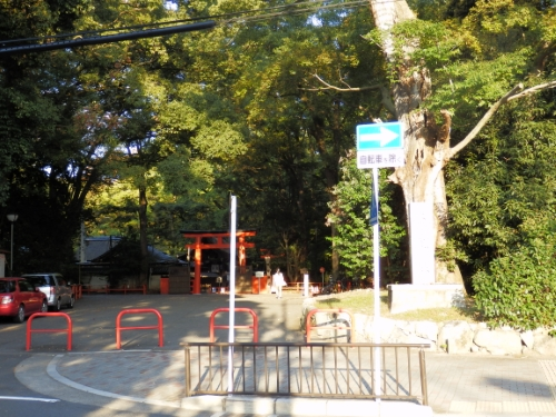 下賀茂神社 (4)_resized