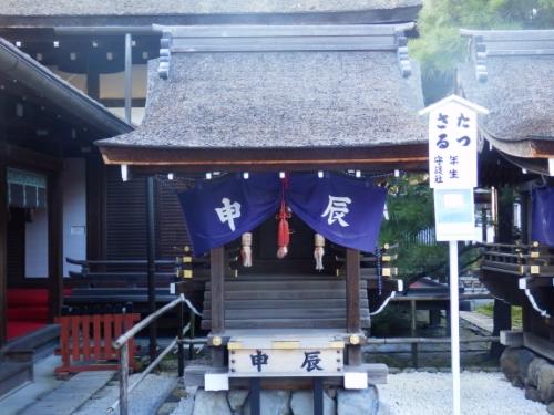 下賀茂神社 (25)_resized