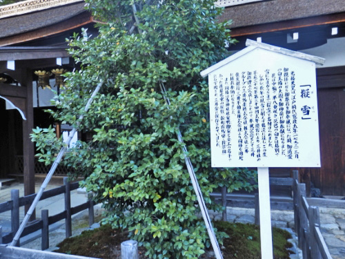 下賀茂神社 (29)_resized