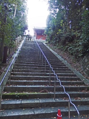 岩清水八幡宮 (49)_resized