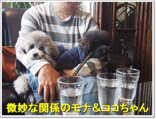 20151213_058.jpg