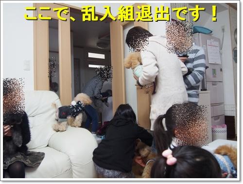 20151213_288.jpg