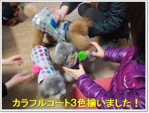 20151227_158.jpg