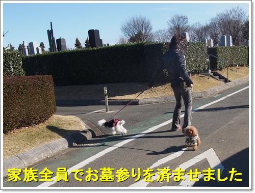 20151230_197.jpg