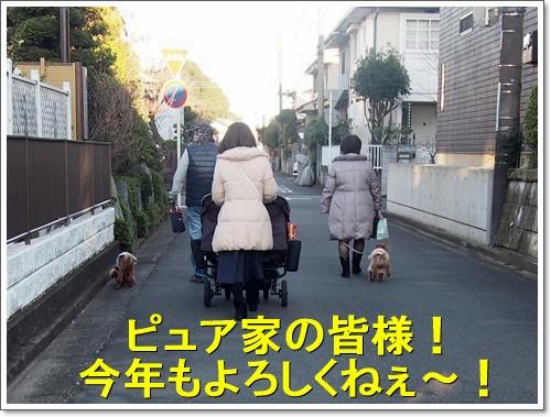 20160101_024.jpg