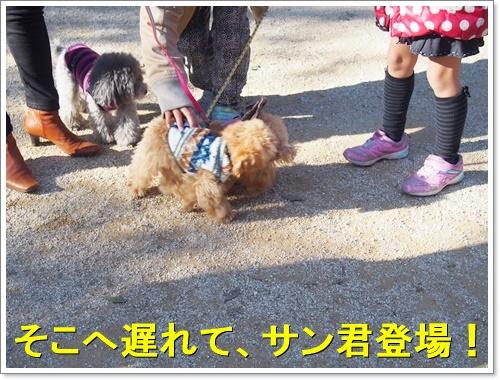 20160103_081.jpg