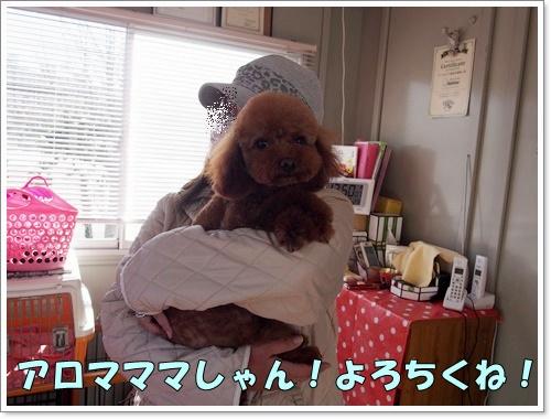 20160120_028.jpg