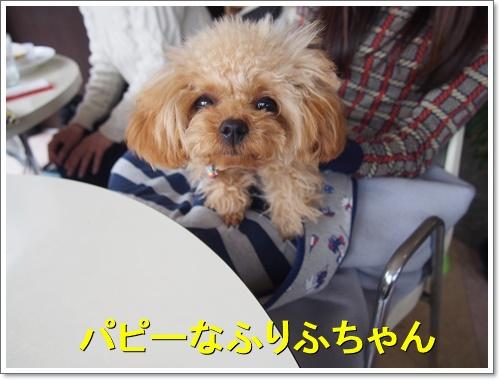20160130_070.jpg