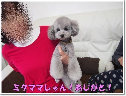 20160302_086.jpg