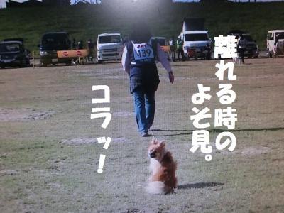 028繝シ菫ョ豁」_convert_20151106064301