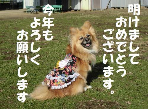 002繝シ菫ョ豁」_convert_20151231234138