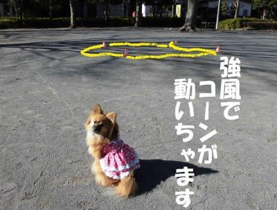 011繝シ繧ウ繝斐・菫ョ豁」_convert_20160126054421
