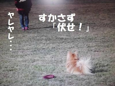 024繝シ菫ョ豁」_convert_20160302223658