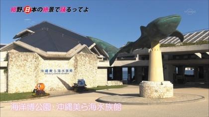 151226備瀬 (10)
