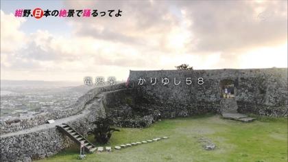 151226電照菊 (10)