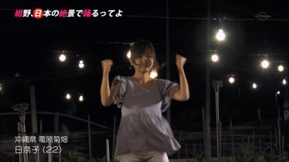 151226電照菊 (1)