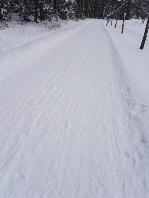 Talvikeli 歩道 雪 フィンランド 冬