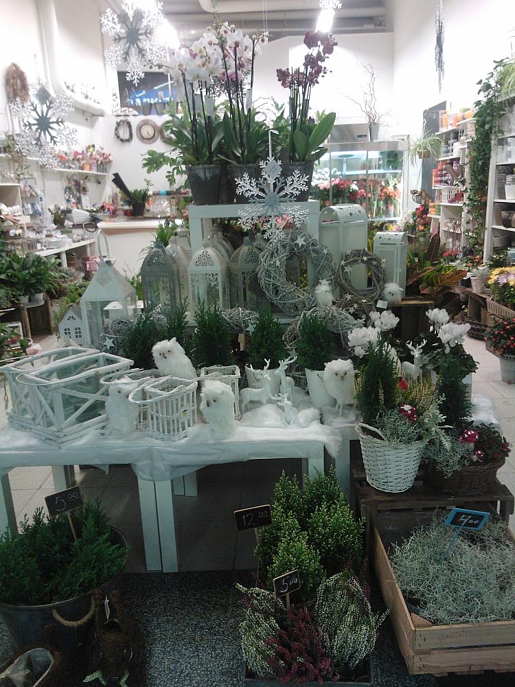フィンランド クリスマス 花や Joulu Kukkakauppa