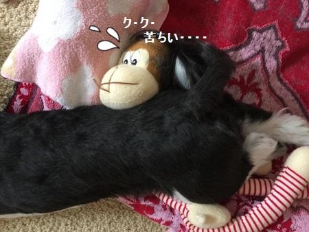 IMG_5808moji.jpg