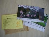 2008_0101_000005-IMGP4388.jpg