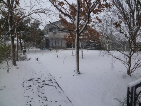 大雪(5)