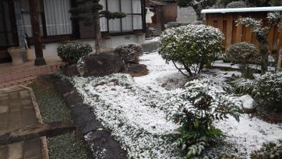 2016.1.24雪2