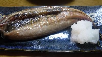 2016.1.22食事4