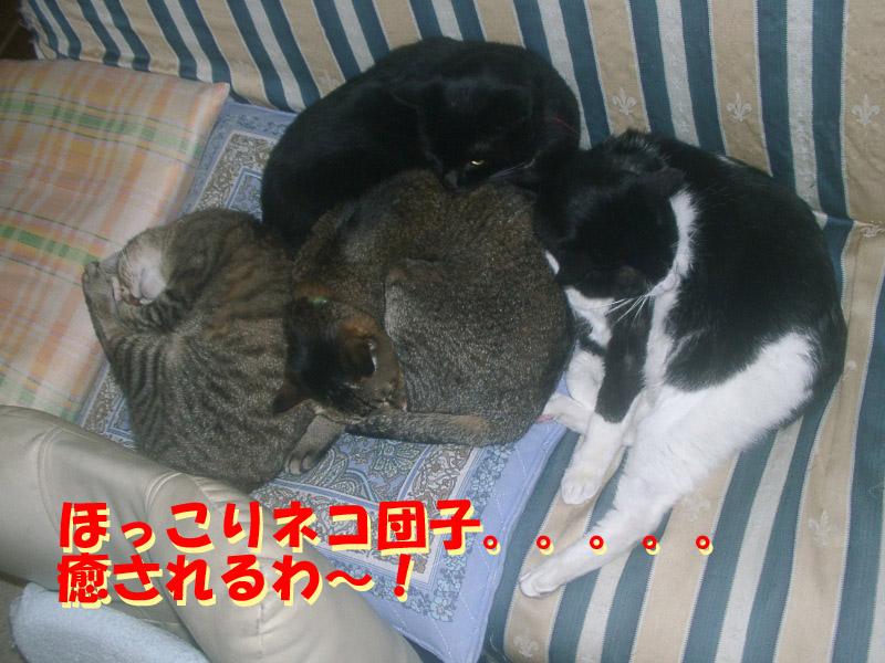 安眠妨害1