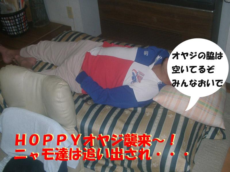 安眠妨害2