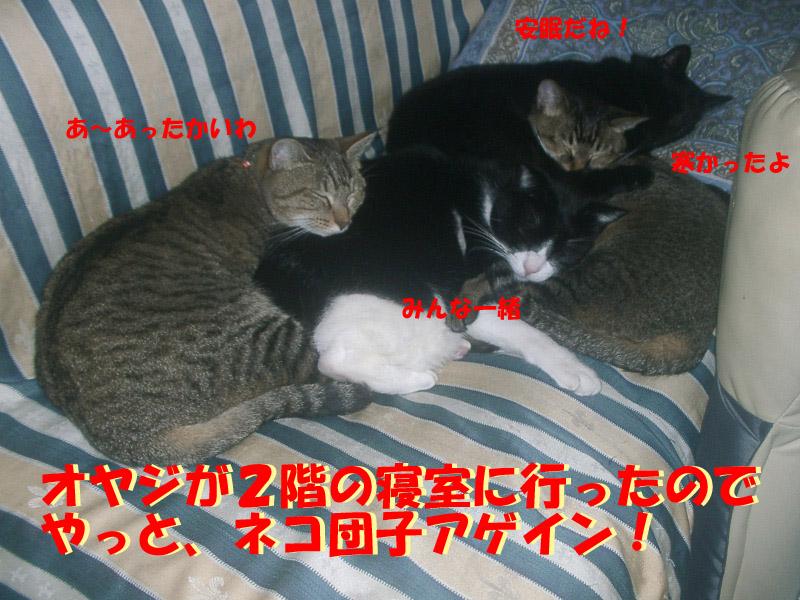 安眠妨害5
