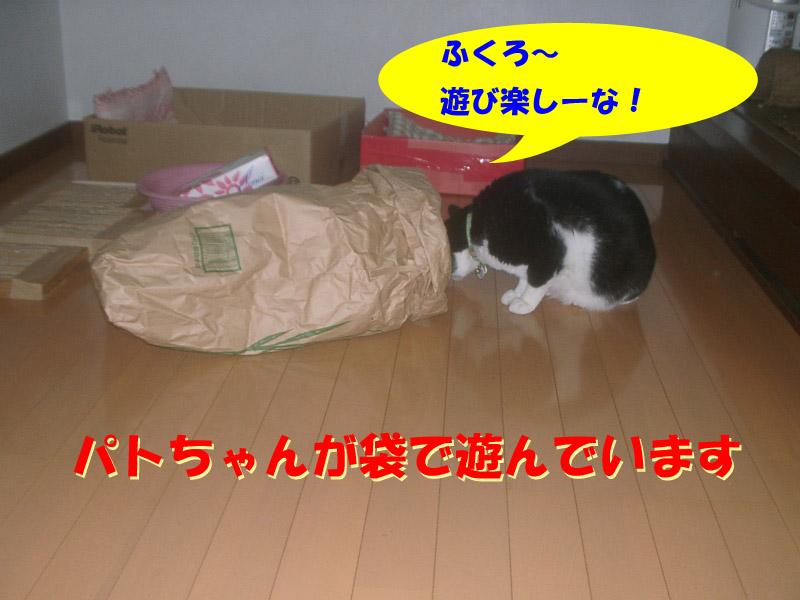 ツーちゃん袋1