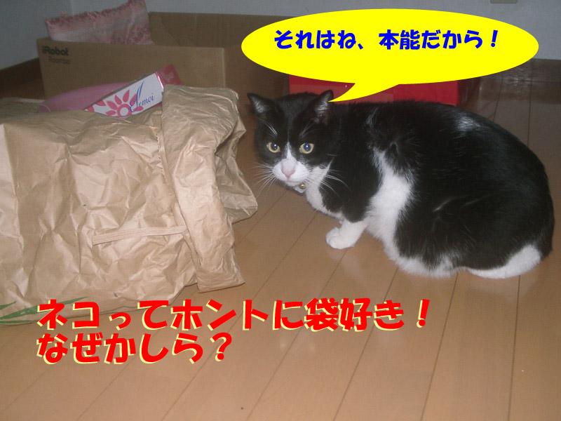 ツーちゃん袋2