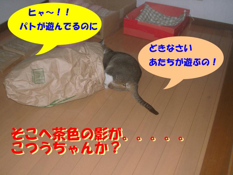 ツーちゃん袋4
