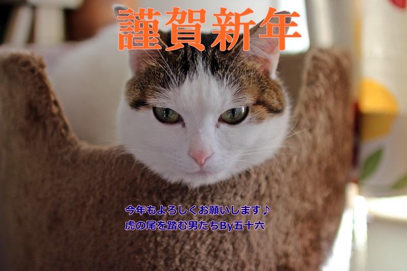 2016-01-01 新規フォルダー4609 (4)