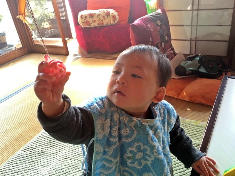 nobunobus12300886.jpg