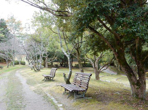 miyamaikekouenn2.jpg