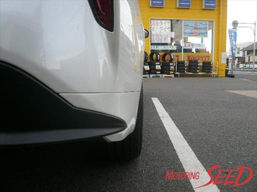 P1090608_R.jpg